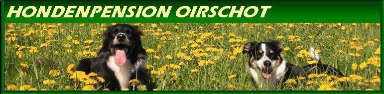 Hondenpension Oirschot